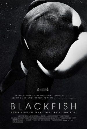 Thumbnail for Blackfish