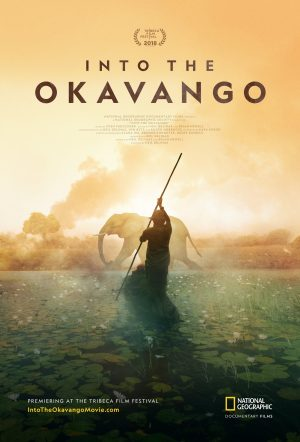 Thumbnail for Into the okavango